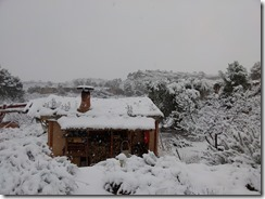 floresdevida-neige